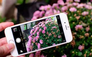 Как сделать качественные фотографии на айфон 5s