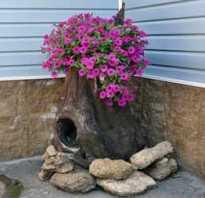 Как сделать дырку в пне для цветов