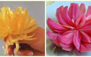 Как сделать цветок из лука