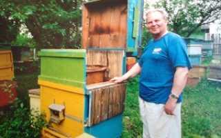 Как сделать пчелопавильон своими руками схема
