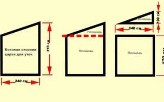 Как сделать уткам домик