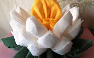 Как сделать цветок лотоса из салфеток