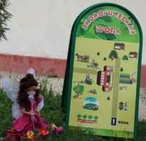 Как сделать экологическую тропу в детском саду